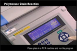 AbVideo™-Polymerase Chain Reaction-Abnova