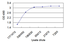 ELISA Pair (Transfected lysate)