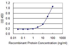 夹心ELISA(重组蛋白)