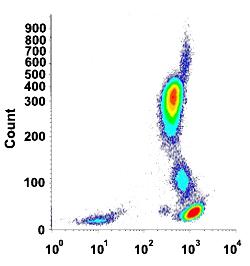 PTPRC monoclonal antibody, clone D3/9 (DY-634) - (MAB13932