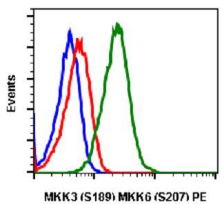 MAP2K3/MAP2K6 (phospho S189/S207) monoclonal antibody, clone D3 (PE