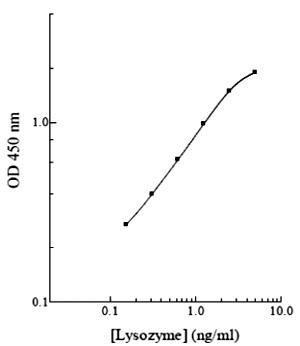 qc_test-KA0485-1.jpg