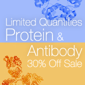Limited Quantities - Protein & Antibody Sale